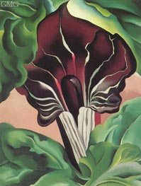 Jack in the Pulpit II, 1930 von O'Keeffe | Gemälde-Reproduktion