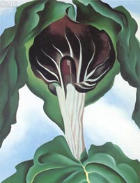 Jack in the Pulpit III, 1930 by O'Keeffe | Painting Reproduction