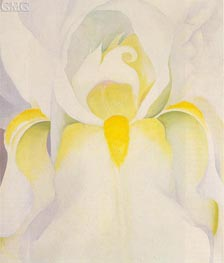 White Iris, c.1926 by O'Keeffe | Painting Reproduction