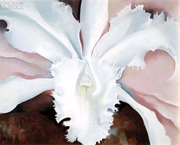 Narcissa's Last Orchid, 1941 by O'Keeffe | Painting Reproduction