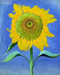 Sunflower, New Mexico, I, 1935 by O'Keeffe | Painting Reproduction