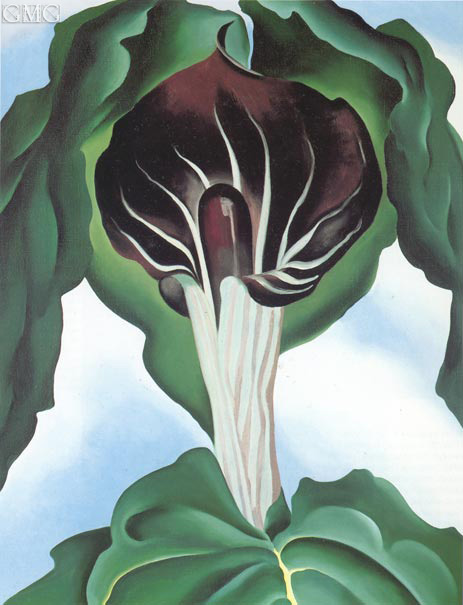 Jack in the Pulpit III, 1930 | O'Keeffe | Painting Reproduction