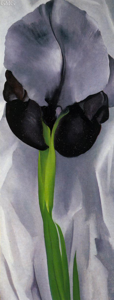 Iris, 1929 | O'Keeffe | Painting Reproduction