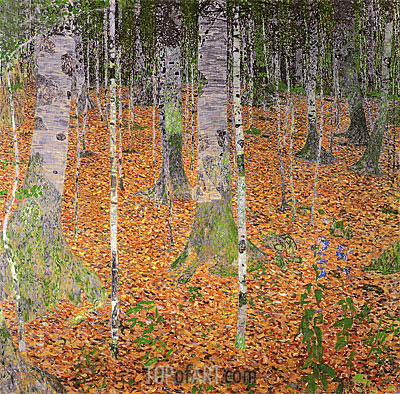 Birch Woods, 1903 | Klimt | Gemälde Reproduktion