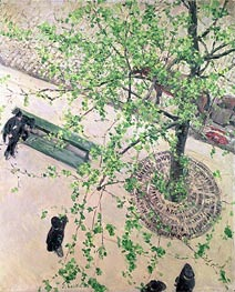 Boulevard seen from Above | Caillebotte | Painting Reproduction