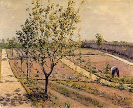 Kitchen Garden, Petit Gennevilliers | Caillebotte | Painting Reproduction