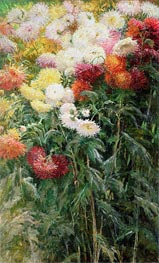 Clump of Chrysanthemums, Garden at Petit Gennevilliers, 1893 by Caillebotte | Painting Reproduction