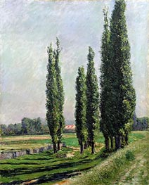 Poplars on the Riverbank at Argenteuil | Caillebotte | Painting Reproduction