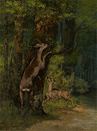 Deer in the Forest, 1868 by Courbet | Painting Reproduction
