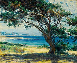 Wind Swept Pines, Undated by Guy Rose | Painting Reproduction