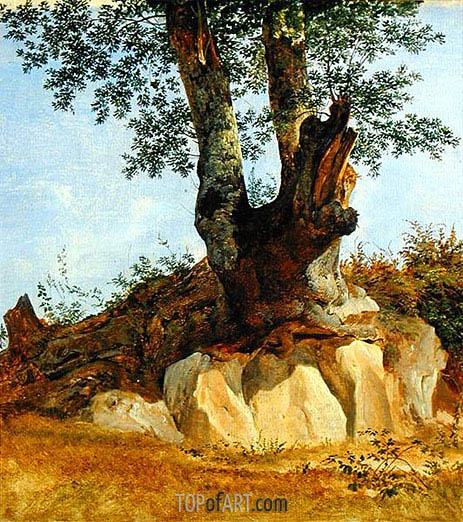 A Tree in Campagna, c.1822/23   Heinrich Reinhold   Painting Reproduction