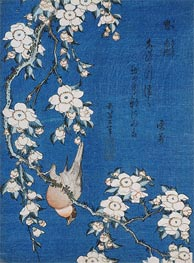 Bullfinch and Weeping Cherry Blossoms from Serie 'Flowers and Birds' | Hokusai | Painting Reproduction