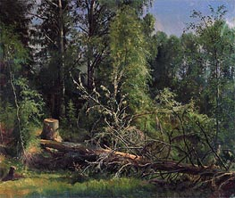 Felled Tree, 1875 by Ivan Shishkin | Painting Reproduction