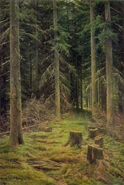 Fir-Tree Forest, 1873 by Ivan Shishkin | Painting Reproduction
