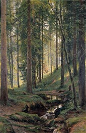 Stream by a Forest Slope, 1880 by Ivan Shishkin | Painting Reproduction
