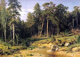 Pine Forest in Viatka Province, 1872 by Ivan Shishkin | Painting Reproduction