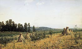 Polesye Landscape, 1884 by Ivan Shishkin | Painting Reproduction