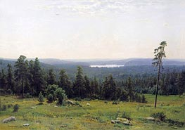 Woodland Vistas | Ivan Shishkin | Painting Reproduction