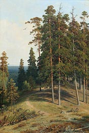 Pine on a Sandy Soil, 1895 by Ivan Shishkin | Painting Reproduction