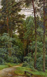 In the Woods | Ivan Shishkin | Painting Reproduction