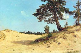 Pine on the Sand, 1884 by Ivan Shishkin | Painting Reproduction