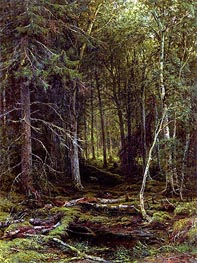 Backwoods | Ivan Shishkin | Painting Reproduction