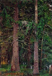 Spruce Forest, c.1889/90 by Ivan Shishkin | Painting Reproduction