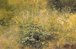 Herbs, 1892 by Ivan Shishkin | Painting Reproduction