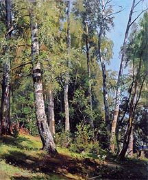 Birch Grove, 1896 by Ivan Shishkin | Painting Reproduction