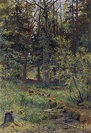 Forest Landscape, 1889 by Ivan Shishkin | Painting Reproduction
