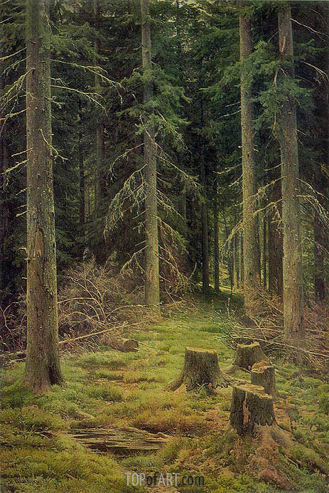 Fir-Tree Forest, 1873 | Ivan Shishkin | Painting Reproduction