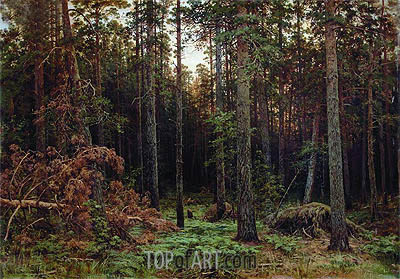 Pine Forest, 1885 | Ivan Shishkin | Painting Reproduction