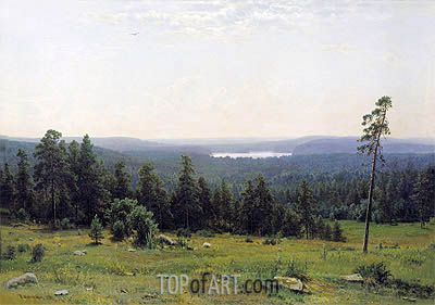Woodland Vistas, 1884 | Ivan Shishkin | Painting Reproduction