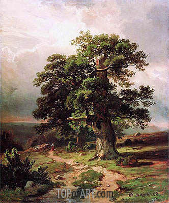 Oaks, 1864 | Ivan Shishkin | Painting Reproduction