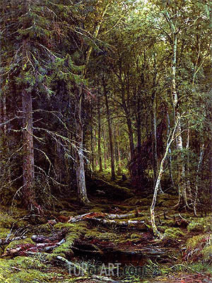 Backwoods, 1872 | Ivan Shishkin | Painting Reproduction