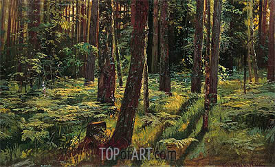 Ferns in the Forest. Siverskaya, 1883 | Ivan Shishkin | Painting Reproduction