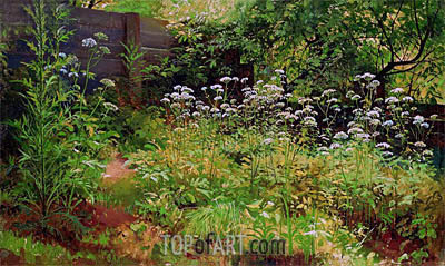 Goutweed-Grass. Pargolovo, c.1884/85 | Ivan Shishkin | Painting Reproduction