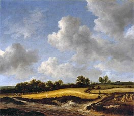 Landscape with a Wheatfield | Ruisdael | Painting Reproduction
