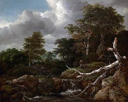 Forest Scene | Ruisdael | Painting Reproduction