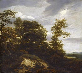 A Wooded Dune Landscape, undated by Ruisdael | Painting Reproduction