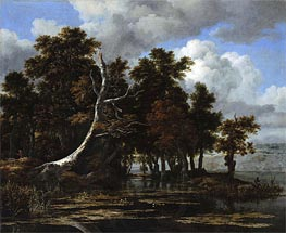 Oaks at a Lake with Water Lilies, undated by Ruisdael | Painting Reproduction
