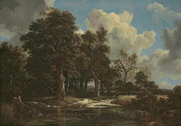 Edge of a Forest with a Grainfield, c.1656 by Ruisdael | Painting Reproduction