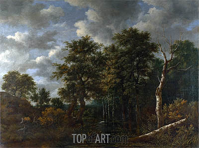 A Pool Surrounded by Trees, c.1665 | Ruisdael | Gemälde Reproduktion