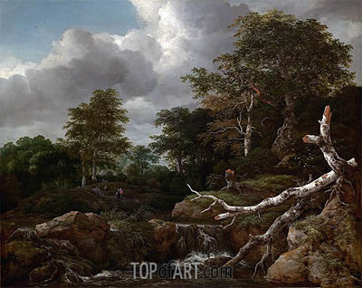 Forest Scene, c.1655 | Ruisdael | Painting Reproduction