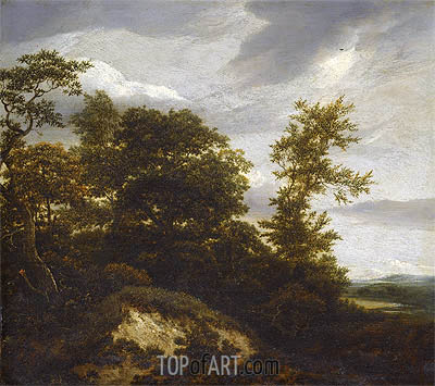A Wooded Dune Landscape, undated | Ruisdael | Gemälde Reproduktion