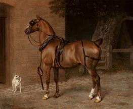 A Carriage Horse, undated by Jacques-Laurent Agasse | Painting Reproduction
