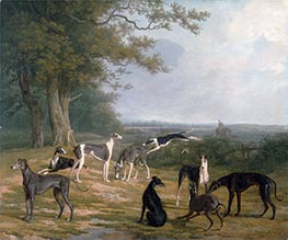 Neun Windhunde in Landschaft | Jacques-Laurent Agasse | Gemälde Reproduktion