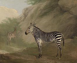 Zebra | Jacques-Laurent Agasse | Painting Reproduction