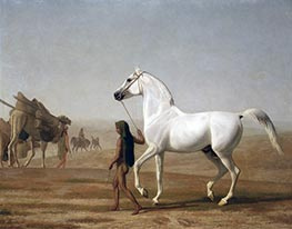 The Wellesley Grey Arabian Led through the Desert | Jacques-Laurent Agasse | Painting Reproduction