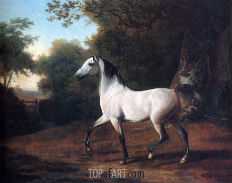 A Grey Arab Stallion in a Wooded Landscape, undated | Jacques-Laurent Agasse | Painting Reproduction